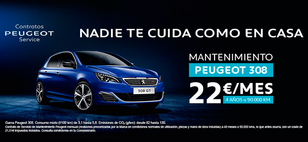 Mantenimiento Peugeot 308